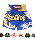 Twins Special Muay Thai Shorts TWS-T34 Gold